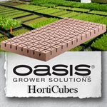 "Oasis Horticube 1.25"" Med. (5240) 104 / feuille"